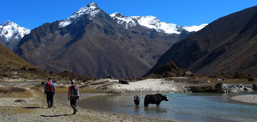 nepal tour guide team trek & expedition